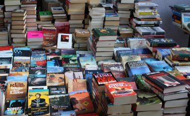 Autorin Bücher Romane Kollegen